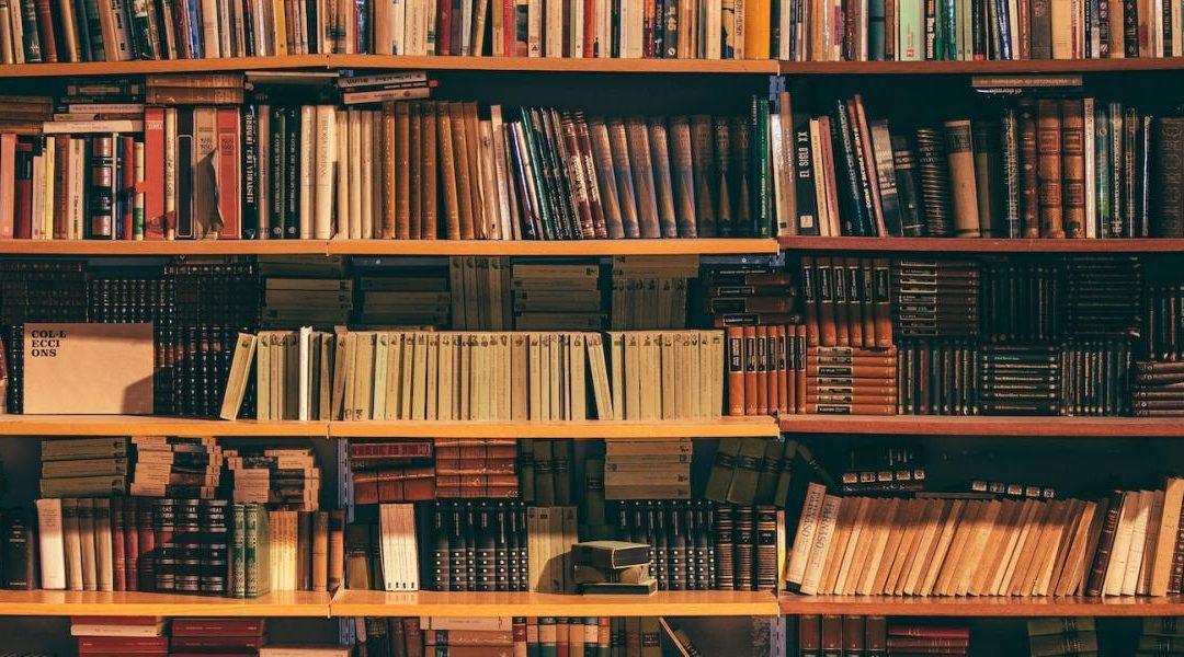 Knjižnica znova odprta